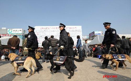 为保障旅客安全火车站警犬巡逻 让春运回家之路能够更加平稳安全